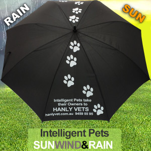 SUN WIND RAIN Umbrella