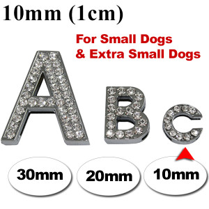 Dog Collar Small Dogs 10mm wide
