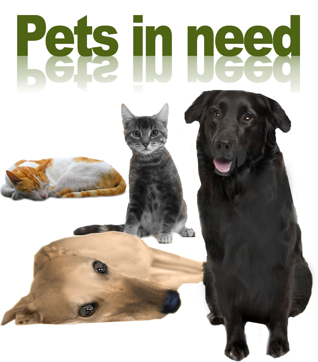 Pets-in-Need