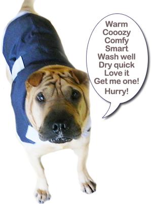 Dapper Dog Coat from Hanly Vets