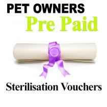 Pet Owners Sterilisation vouchers for Dogs