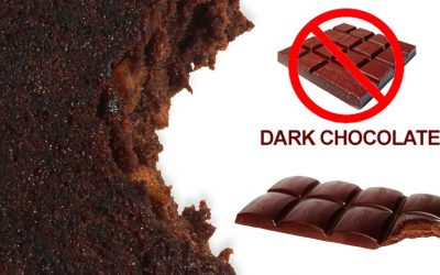 Truth about giving Dogs Chocolate
