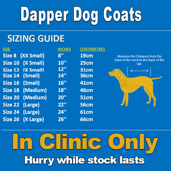 Dapper-size-guide