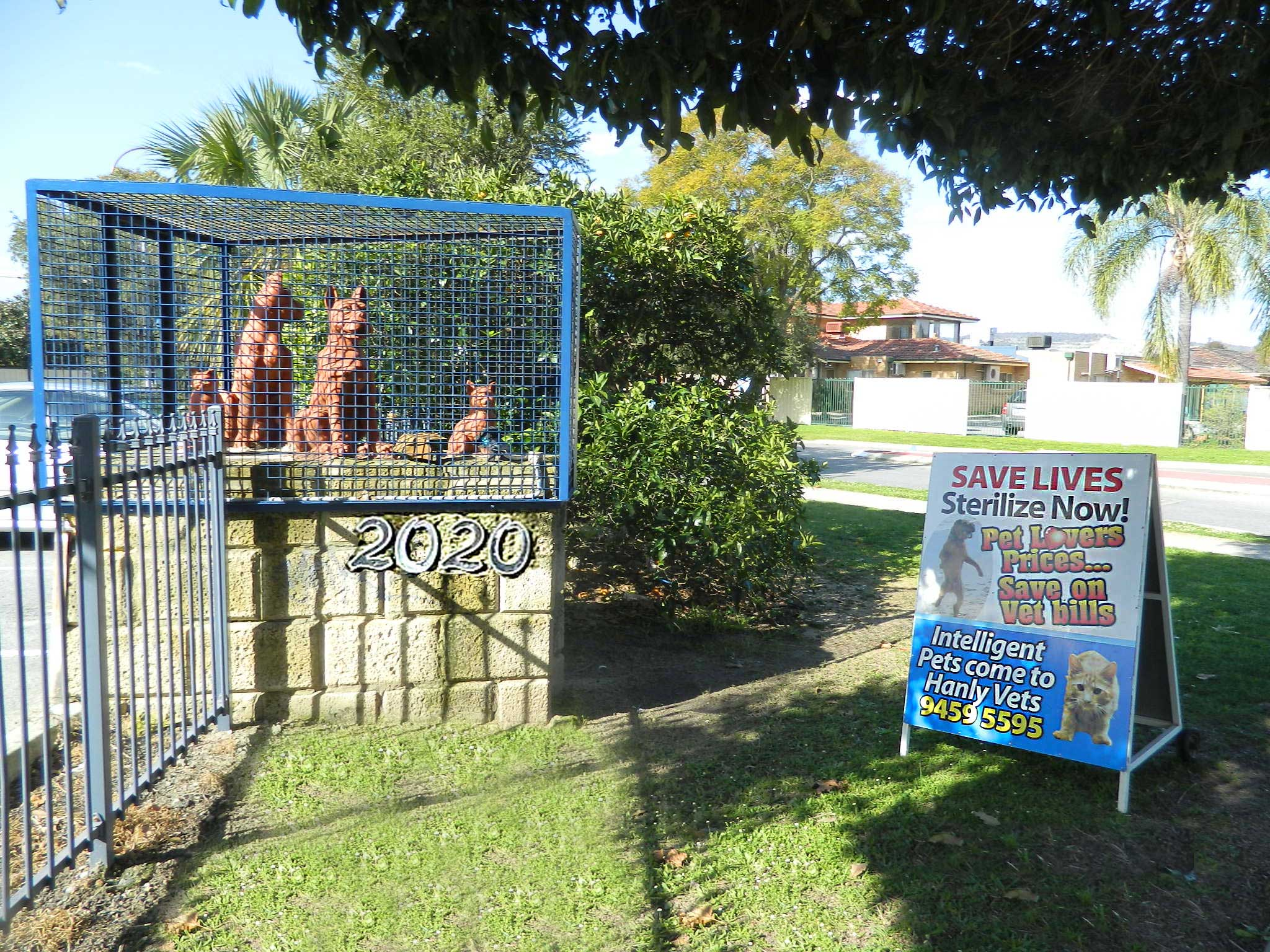 Breeders Sending Pets to Perth WA