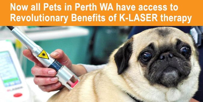 K-Laser Therapy Perth WA