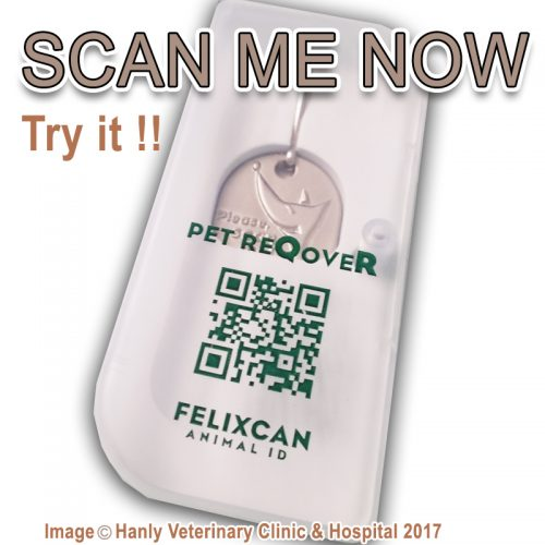 Pet Recovery QR Coded Collar Tag PET REQOVER