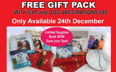 FREE Gift Pack with Dog & Cat Vaccinations 24th Dec ONLY