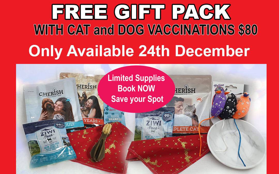 Free Gift Pack with All Cat and Dog Vaccinations 24 Dec only